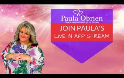 Paula Obrien Releases Her New App Built By Murrayfield & Co